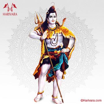 Mrityunjaya Havan