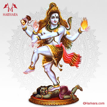 Maha Mrityunjaya Japa